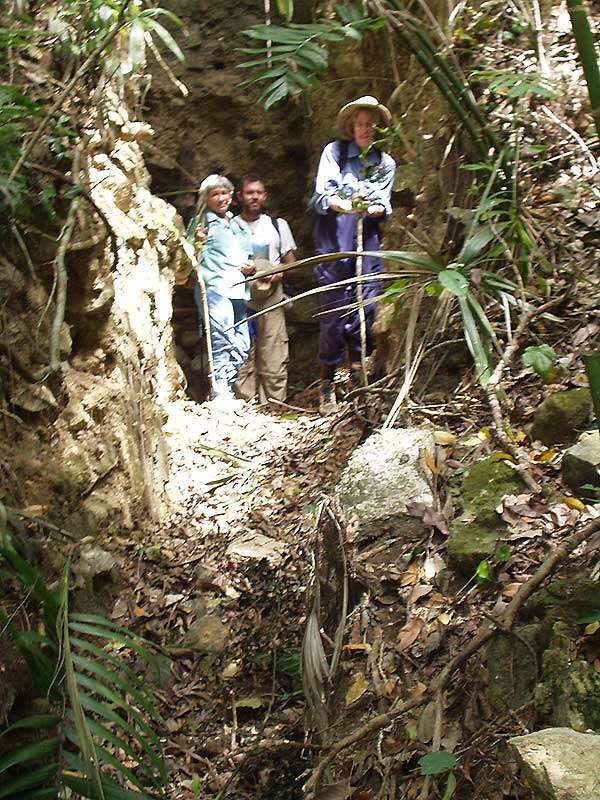 Looters Trench - El Peru Photo Gallery - Maya Expeditions