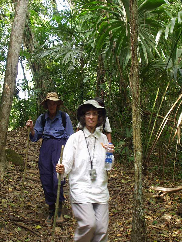 Lush Jungle Trail - El Peru - Maya Expeditions