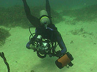Scuba Diver with camera - photo by Pepe Scuba - Maya Expeditions