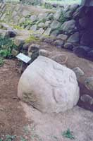 Takalik Abaj Fat Frog Statue - Maya Expeditions