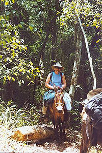 El Mirador Trail Ride