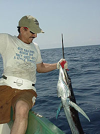 Sail Fish - photo Parlama Team - Maya Expeditions